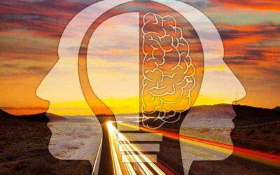 El factor humano ante el nuevo paradigma de la conducción