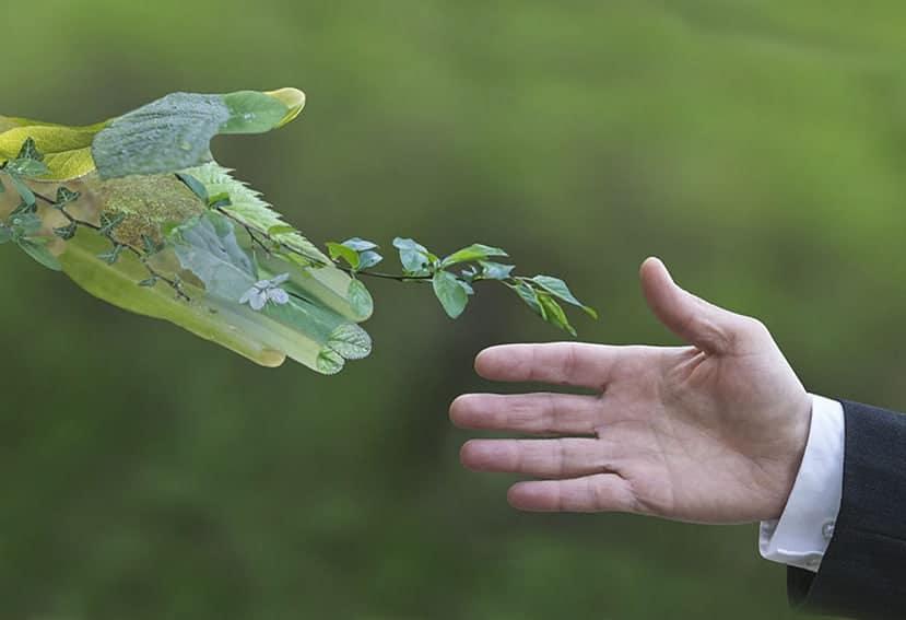 Transición hacia una movilidad sostenible